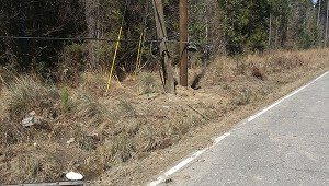 This is the accident scene of the fatal crash that claimed the life of a 23-year-old Carriere man.  Photo submitted