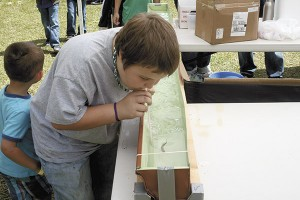 SPRING FUN: Above, a child wins a minnow race by blowing air at the fish through a straw.  Jeremy Pittari | Picayune Item